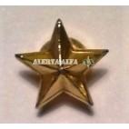 Estrella 5 puntas (Estado Mayor) Unidad
