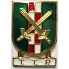 Distintivo Especialidad TTP