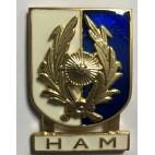 Distintivo Especialidad HAM