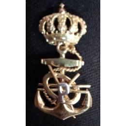 Distintivo de Programador de sistemas de la Armada